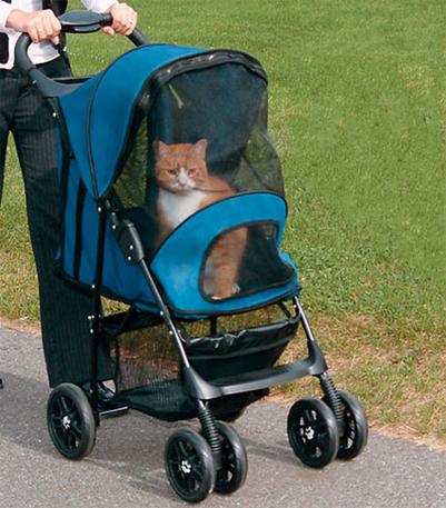 Переноски на колесиках для котов